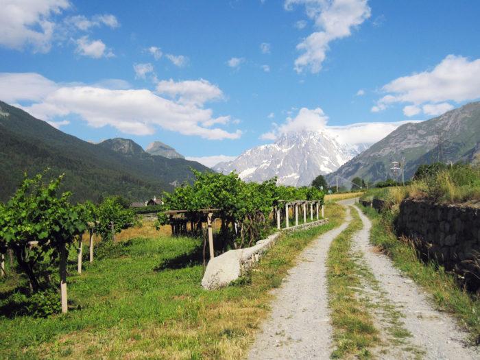 Route des Vins in Realtà Aumentata
