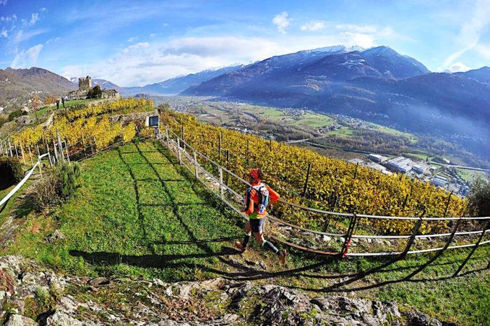 Strada Vini Valtellina in Realtà Aumentata